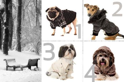 Zimowe ubranka dla psa, fot. Pettecoats (www.pettecoats.com)