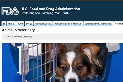 Przekąski dla psów z Chin znów groźne, FDA