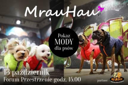 Pokaz mody dla psów – Forum Przestrzenie, fot. Pr Inspiration