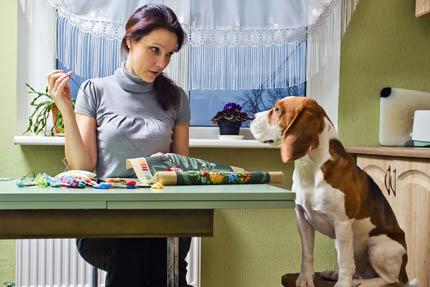 Kto z nas nie rozmawia ze swoim psem lub kotem?, fot. Depositphotos