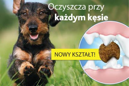Karma dla psa, która czyści zęby, fot. Eukanuba