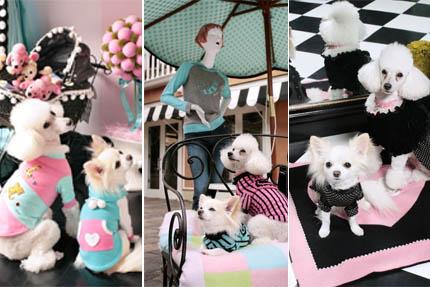 Ubranka dla psa stają się coraz bardziej popularne, fot. Fifi & Romeo
