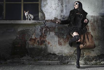 Światy mody – ludzkiej i tej dla zwierząt – przenikają się, fot. iStock