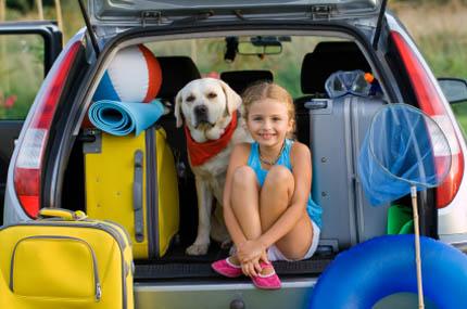 Podróżując z psem warto robić częste postoje, fot. iStock