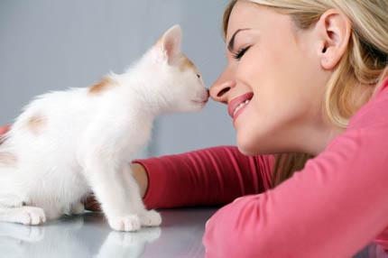 Kot kocha zawsze, gdy ty kochasz kota, fot. iStock