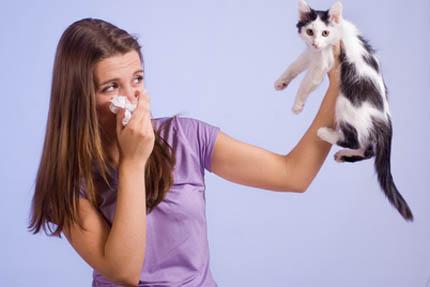 Wczesny kontakt z kotem nie zwiększa ryzyka alergii, fot. Depositphotos