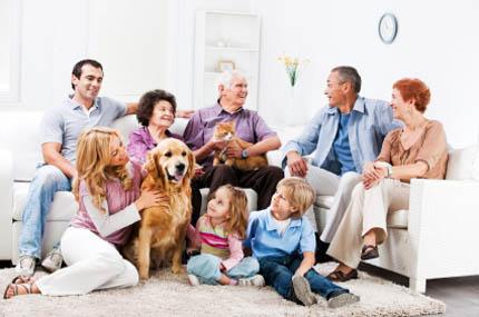 Zwierzę nie może być źródłem domowych konfliktów, fot. iStock