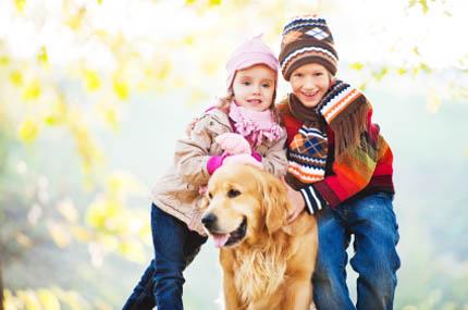 Dzięki zabawie zwierzęta czują się szczęśliwsze, fot. iStock
