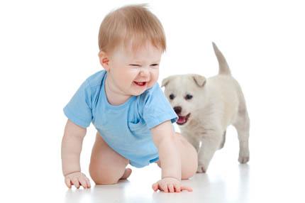 Dzieci przy zwierzętach wiele się uczą, fot. iStock
